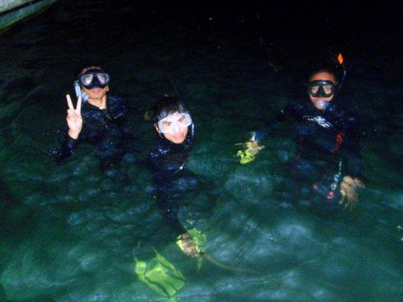 Snorkle dive di malam hari